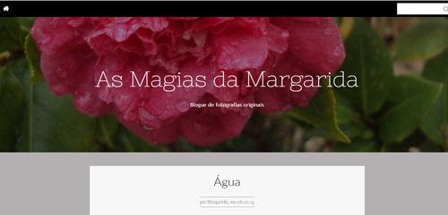 blog gui fev 2015.png
