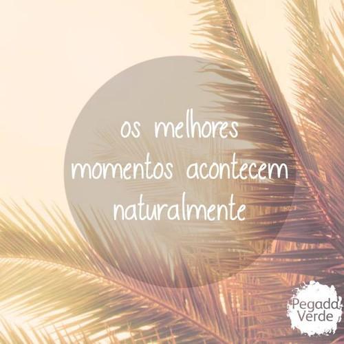 momentos.jpg