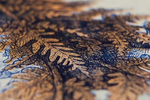barbara-bernat-hungarian-paper-money-designboom-04