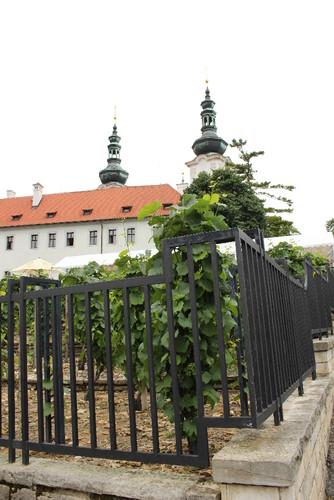 IMG_1531 Praga
