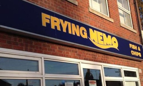 frying-nemo-910192.jpg