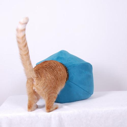 cat-butt3.jpg