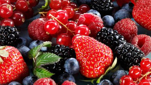 frutossilvestres.jpg