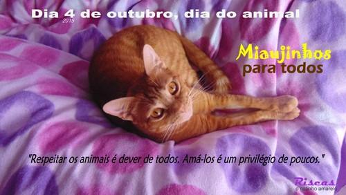 animalday.JPG