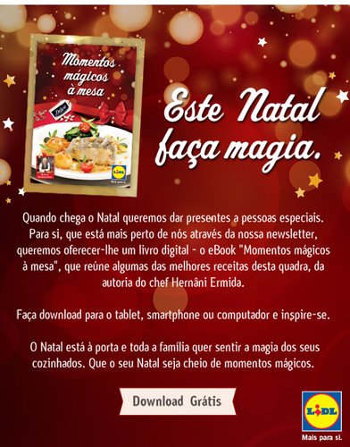 600x765px_xmas_ebook_email_marketing.jpg