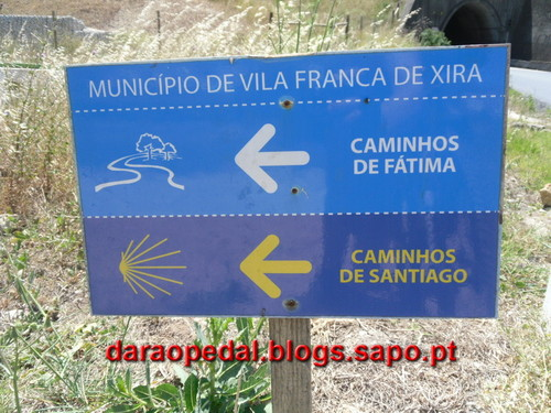 vila franca de xira latin singles Derived from latin roots, portuguese  in portugal they are sure to revisit some of the singles from  lezíria sul de vila franca de xira,vila franca de xira.