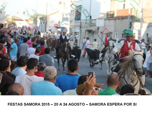 SAMFES2015.jpg