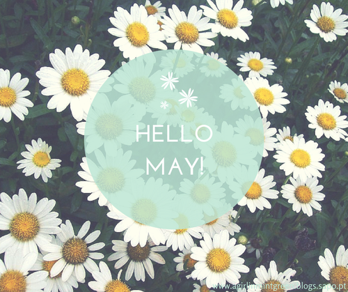 Hello May.png