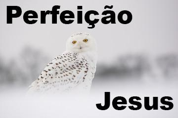 Jesus Perfeição.jpg