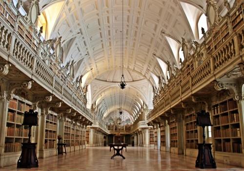 biblioteca-mafra.jpg