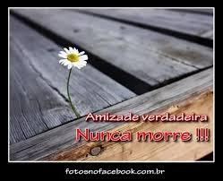 AMIZADE NUNCA MORRE.jpg