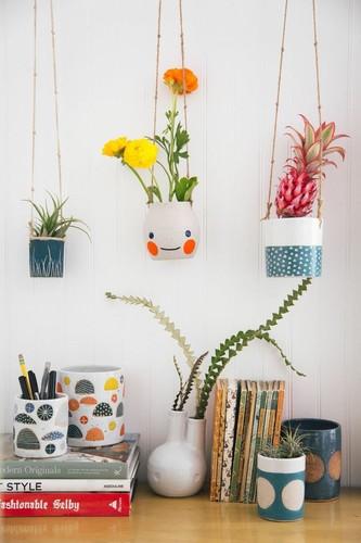 plantas-em-casa-5.jpg