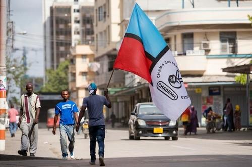 Manifestante Chadema.jpg