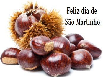 dia_s_o_martinho.jpg