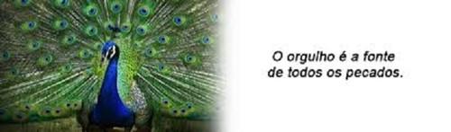 Orgulho 8.jpg