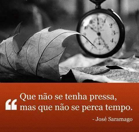 saramago2.jpg