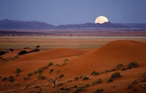 deserto 2.jpg
