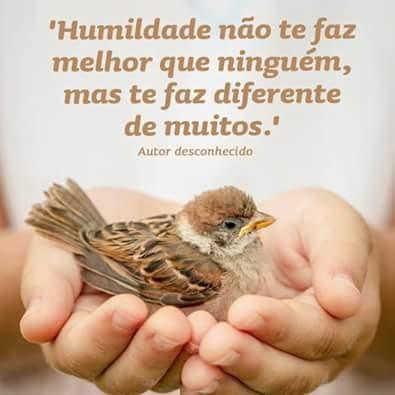 FB_IMG_1454880016526.jpg