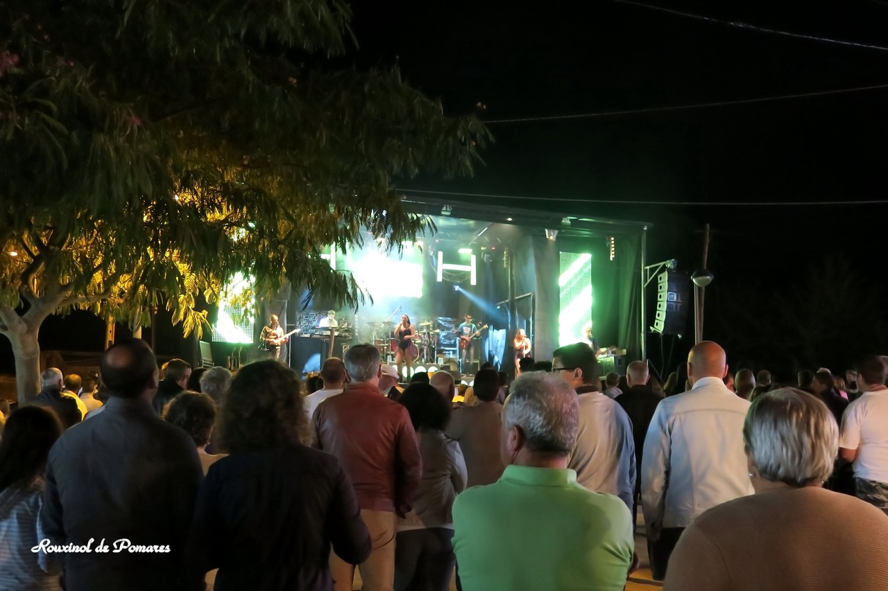 Festas Fiolhoso 2015 (2)