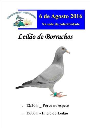 Leilão Travanca.jpg