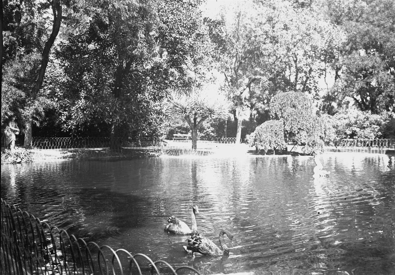 Jardim da Estrela, lago, 1911, foto de Joshua.jpg