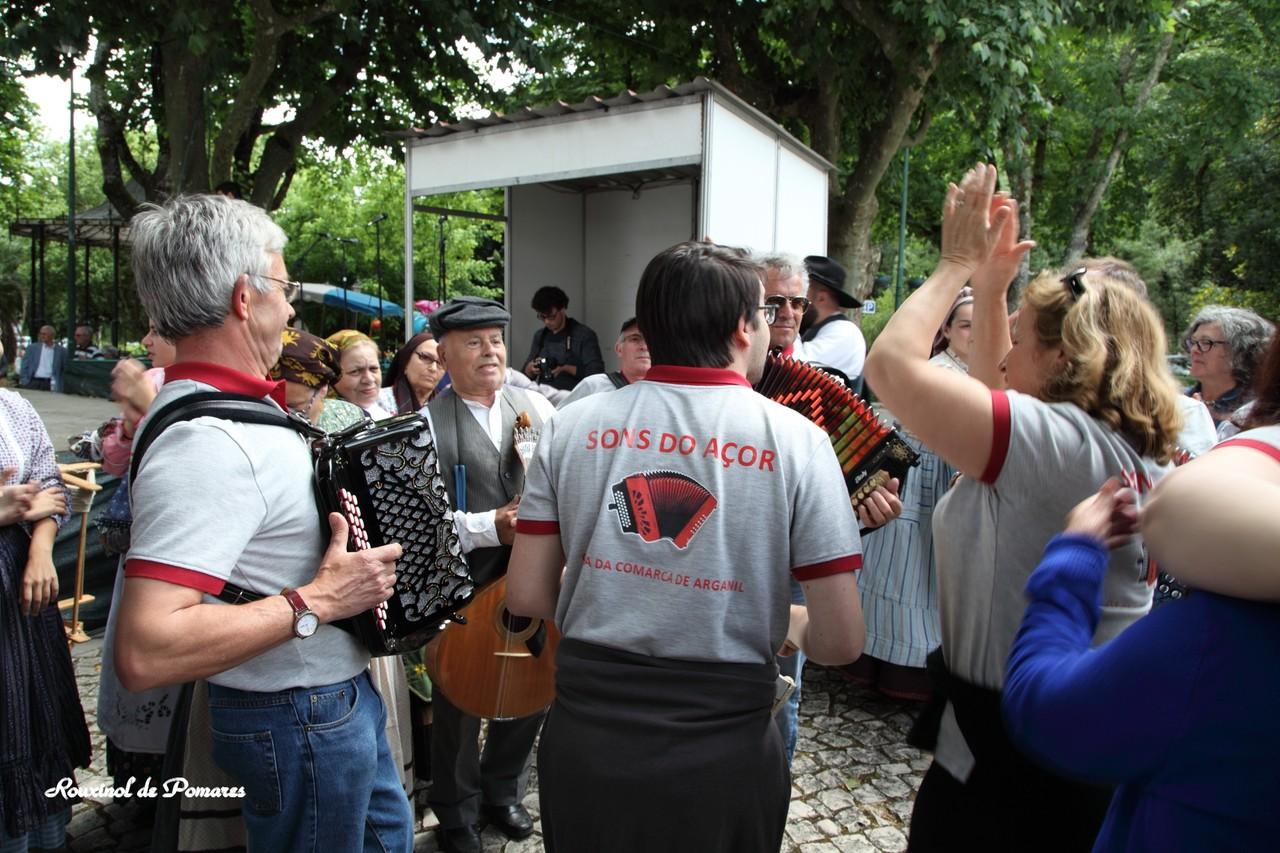 Pela Feira das Freguesias Arganil 2015 III (26)