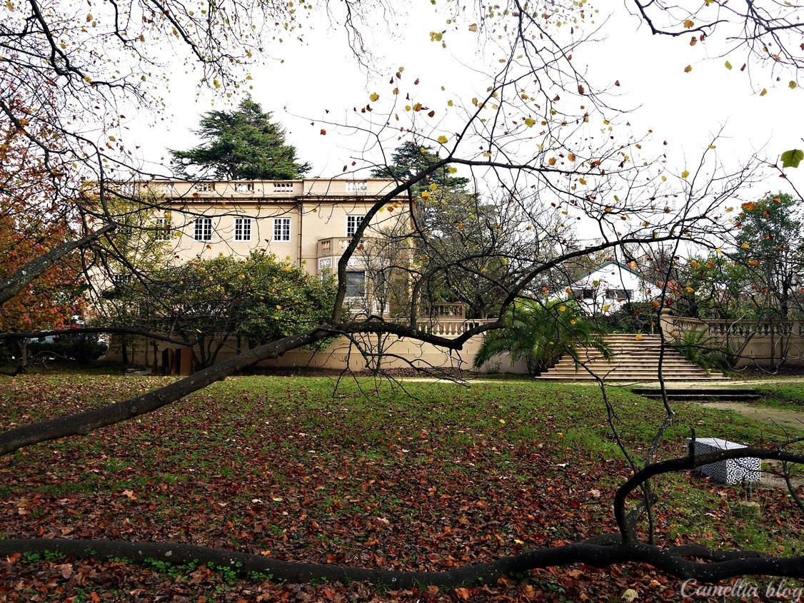 Casa das Artes6.JPG