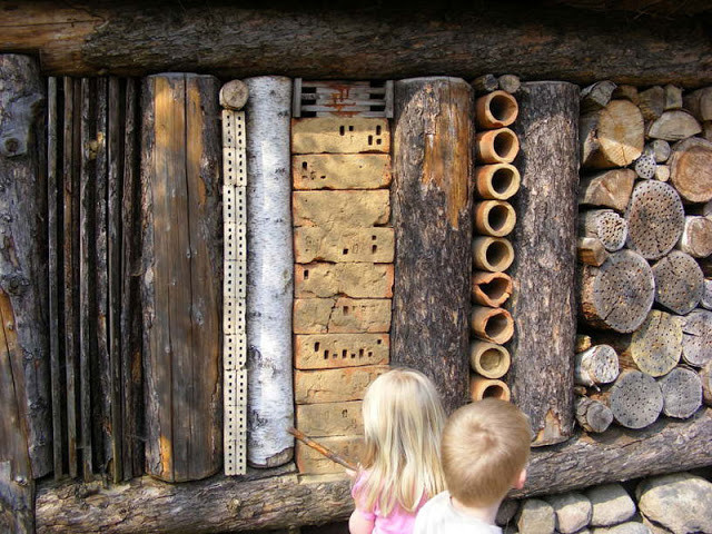 insect hotel.jpg