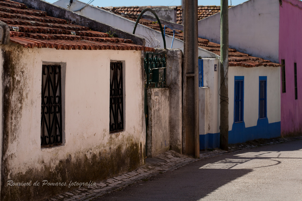 Pela Minha Cidade Agualva-Cacém (10)