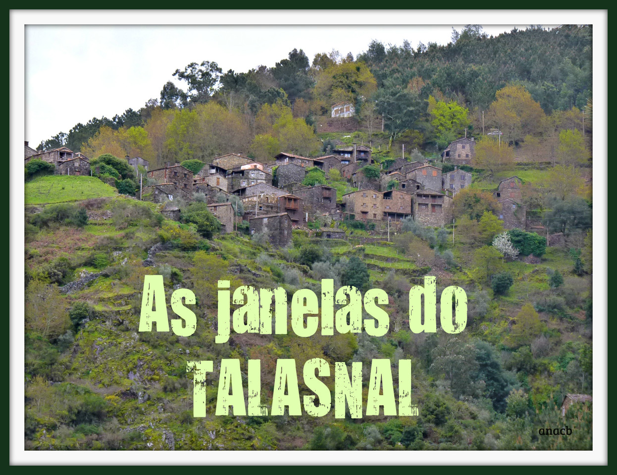 As janelas do Talasnal.jpg