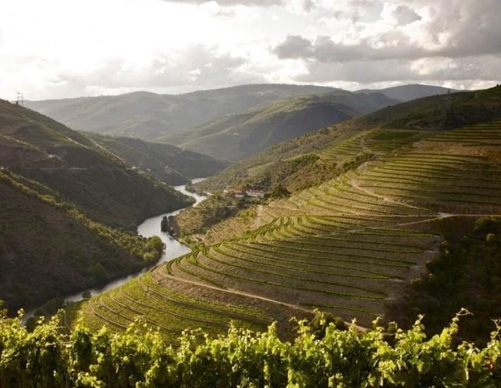 the_yeatman_hotel_douro_valley_landscape_969176844