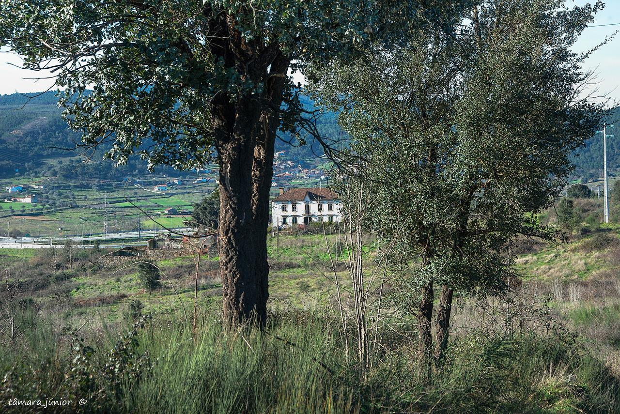 01.- 2016 - Quinta do Calvário (Paranheiras) (1).
