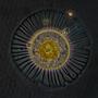 Cópia de planktoniella sol.jpg