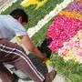 Tapetes Flores Corpo Deus Coura 2013 H