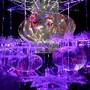 Art Aquarium 2013 no Japão