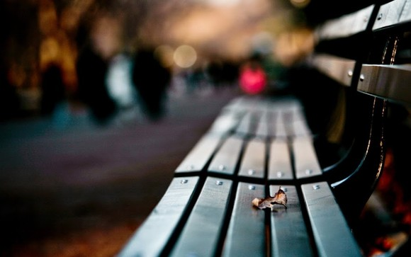 Nature-Bench-Creative-Photography-Wallpaper.jpg