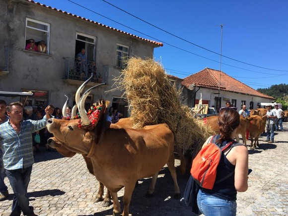 Padornelo Feira dos Tojais q.jpg