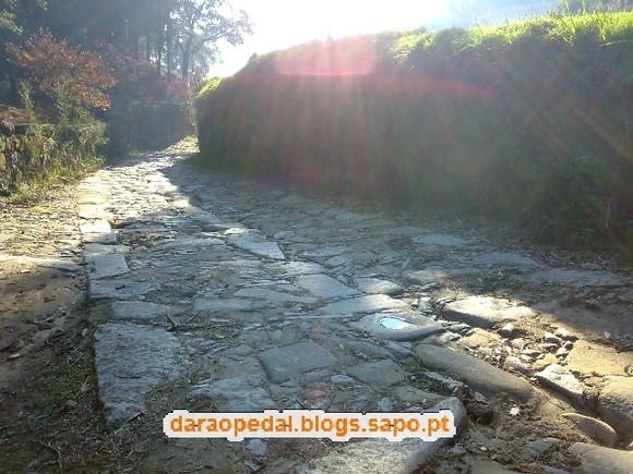 Serra_Canelas_Gaia_23