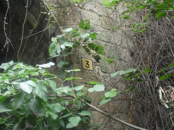 Imagem 284