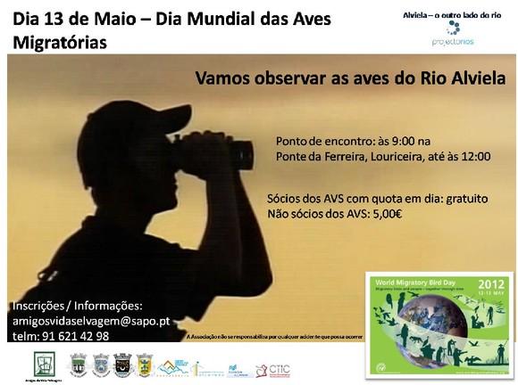 Dia 13_maio_Vamos observar aves do rio Alviela.jpg