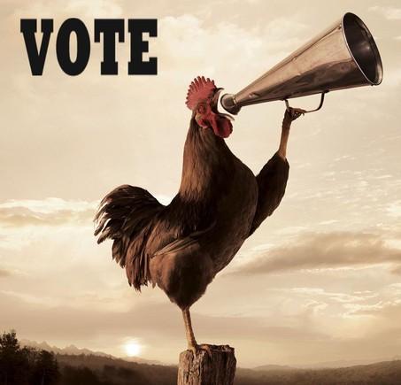 vote-today1.jpg
