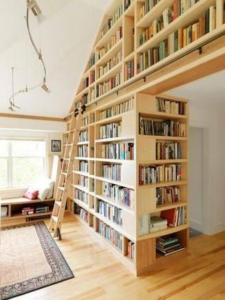 estantes, livros, sonhos