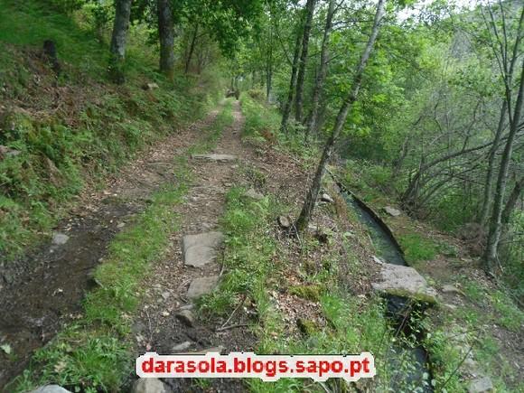 CastroDaire_PR2_39