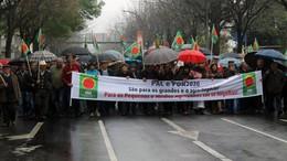 manifestacao_agricultores_Braga_2015-03-26