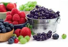 frutos vermelhos bioino.jpg