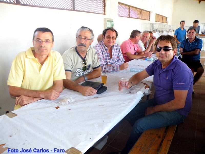 Leilão Castro Verde 005.JPG