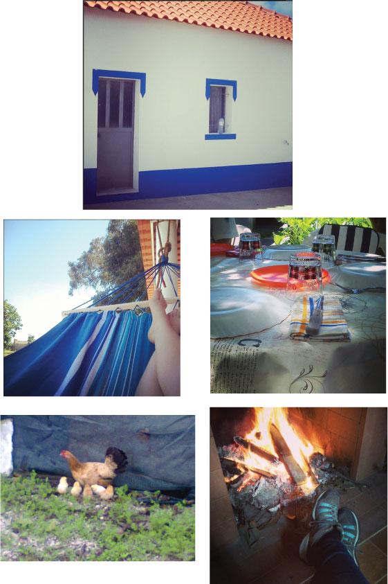 fotos-pegões.jpg